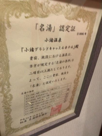 IMG_6904.JPG